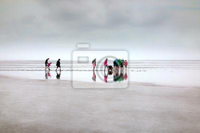 Obraz Wanderung im Weltnaturerbe Wattenmeer an der Nordsee, Deutschland