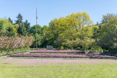 Obraz War Memorial Park in Tacoma, Washington.