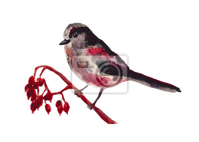 Watercolor art of beautiful portrait of Long-tailed Tit perched on single branch. Black and red color on white background. For posters, textile design, christmas postcard and ornithology magazine