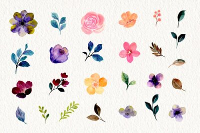 Obraz Watercolor floral and leaf element collection