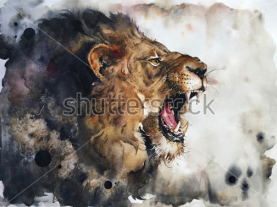 Obraz Watercolour painting of lion