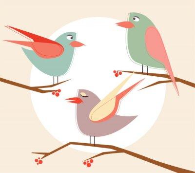 wektor cute ptaków w wektor cartoon zestaw