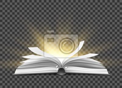 Obraz Wektor realistyczne otwarta książka z fruwające strony