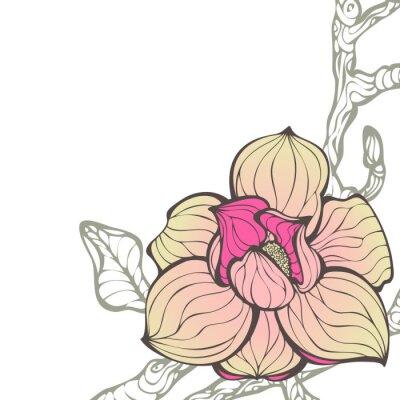 Obraz Wektor ręcznie rysowane kwiatu tła z kwiat magnolii