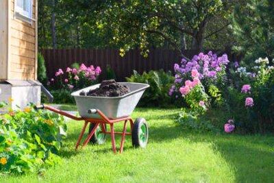 Obraz Wheelbarrow full of compost on green lawn