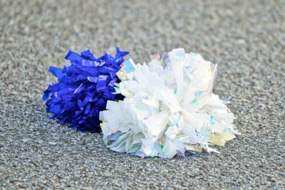 Obraz White and Blue Pom-poms