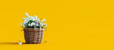 Obraz White flowers in wooden basket on yellow spring background 3D Rendering