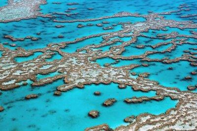 Obraz Widok z lotu ptaka Wielka Rafa koralowa Australii-3