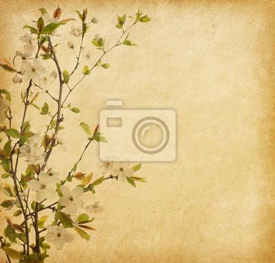 wieku tekstury papieru z Cherry Blossom