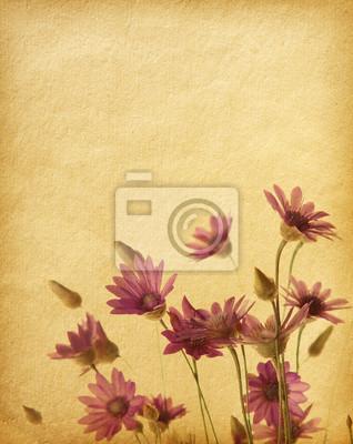 wieku tekstury papieru z Polne kwiaty. Immortelle