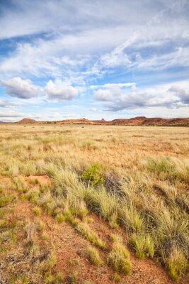 Wild landscape in Canyonlands National Park, Utah, USA.