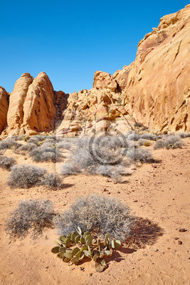 Wilderness of the Valley of Fire State Park, Nevada.