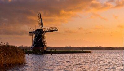 Obraz Wind Mill Molen Holandia