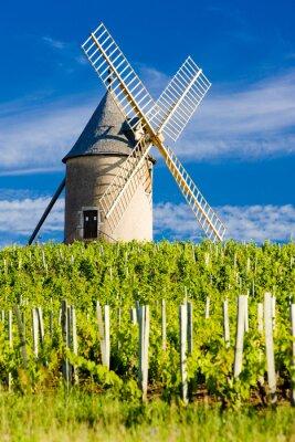 Obraz winnic z wiatraka w pobliżu Chenas, Beaujolais, Burgundy, Franc