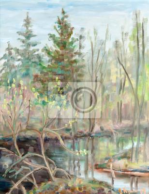 Obraz Wiosna na torfowiska