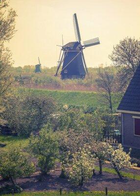 Obraz wiosna w kraju stronie