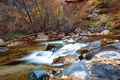 Obraz Woda przepływająca przez rzeki Virgin w Park Narodowy Zion w USA