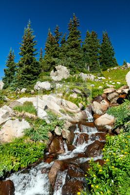 Wodospad i Krajobraz Kwiaty