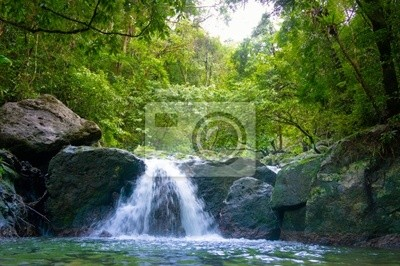 Wodospad jungle