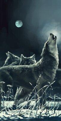 Obraz Wolves