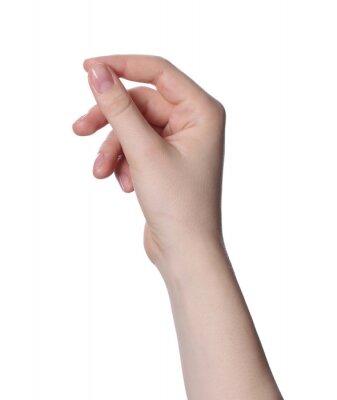 Obraz Woman holding something against white background, closeup