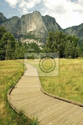 Wooden Pathway w Yosemite