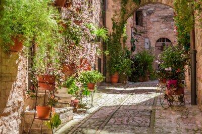 Obraz Wspaniałe ganek urządzone w małej miejscowości we Włoszech w okresie letnim, Umbria