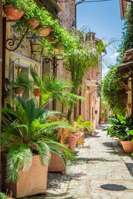 Obraz Wspaniałe urządzone ulicy w małym miasteczku we Włoszech, w Umbrii