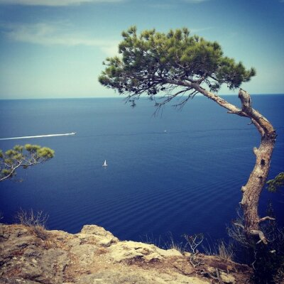 Obraz wybrzeże, Palma de Mallorca