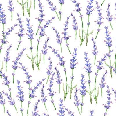 Obraz Wzór akwarela z Lavender.