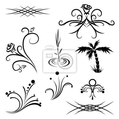 Wzory Roślin Czarno Biały Tatuaż Obrazy Redro