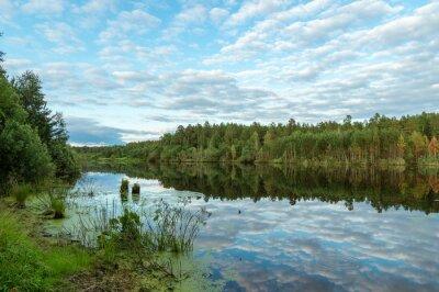 Obraz летний пейзаж с озером и отражением леса в воде, Россия, Урал