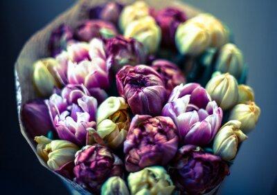 Obraz tulipany bukiet тюльпаны букет