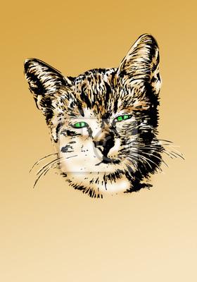 Zabawa kota portret rysunek sztuka