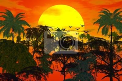 zachód słońca nad dżungli