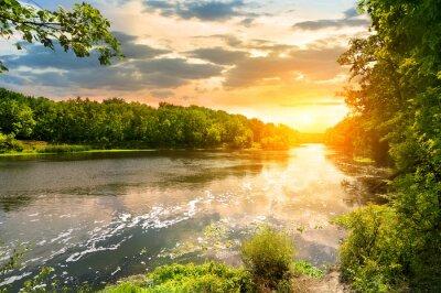Obraz Zachód słońca nad rzeką w lesie