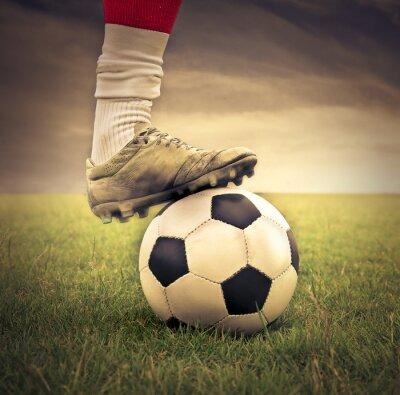 Obraz Zamiłowanie do sportu