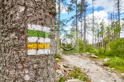 Zamknij się znak szlak turystyczny malowany na drzewie, Wysokie Tatry, Słowacja ..