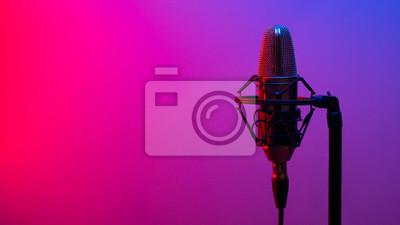 Obraz Zamknij studyjny mikrofon pojemnościowy z antywibracyjnym mocowaniem w czasie rzeczywistym z podświetleniem. Widok z boku