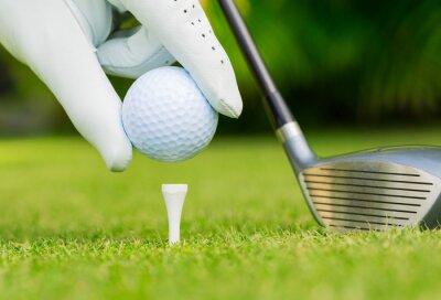 Obraz Zamknij widok z piłeczka golfowa na tee na polu golfowym