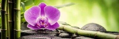 Obraz zen kamienie