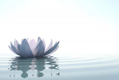 Obraz Zen kwiat loto w wodzie