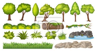 Obraz Zestaw elementu natury do dekoracji