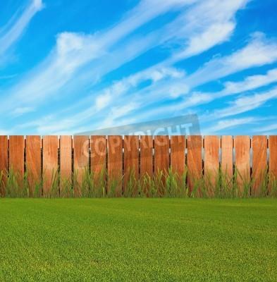 Obraz Zielona trawa w ogrodzie z ogrodzeniem