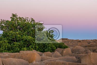 Zielone drzewa i skały o zachodzie słońca w Mazagon plaży