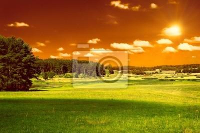 zielone pola, las i czerwone niebo