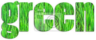 Zielony tekst wypełnione pola ryżu