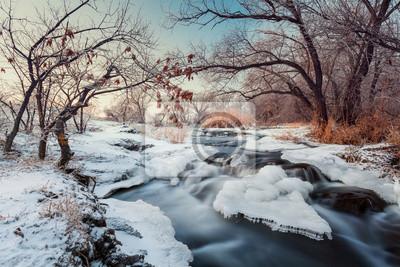 Zimowy las. Rzeka Krinka (Ukraina)