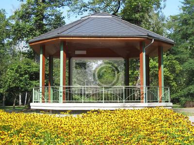 żółte Kwiaty Przed Altany W Parku Obrazy Redro