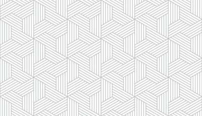 Plakat Abstract geometric pattern with stripes, lines. Seamless vector background. White and grey ornament. Simple lattice graphic design.